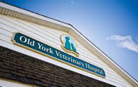 Picture of the Old York Veterinary Clinic